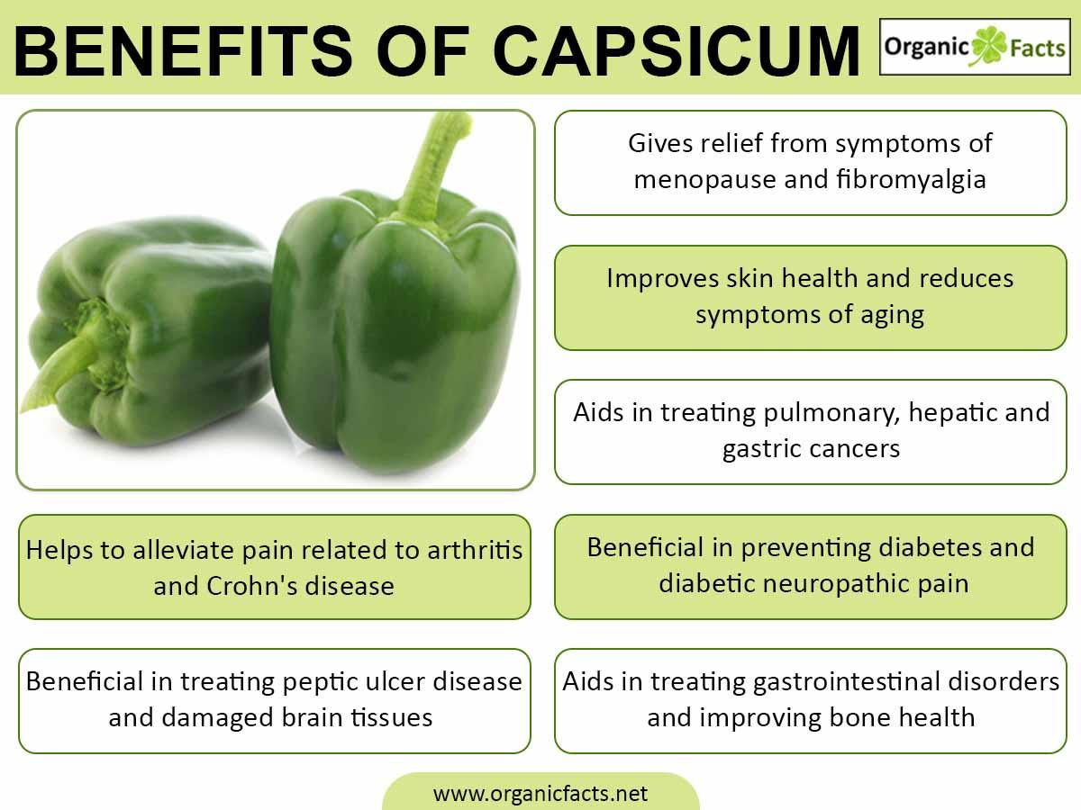 capsicuminfo