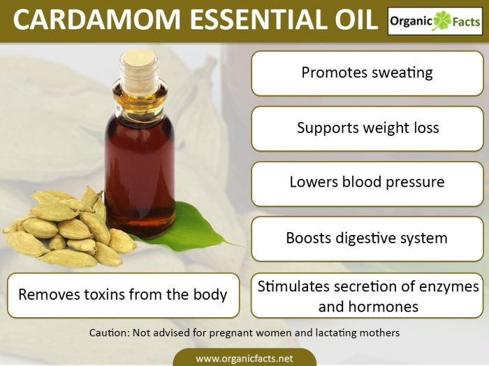 cardamominfographic