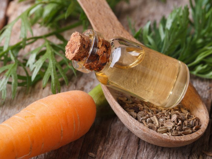 10 Health Benefits Of Carrot Seed Essential Oil