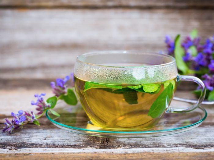 A close-up shot of catnip tea