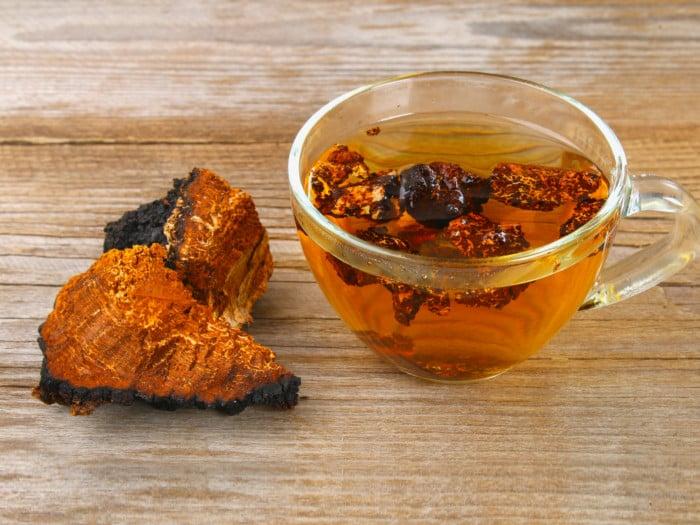 Chaga tea in a cup next to chaga