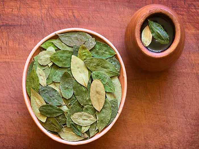 A bowl of coca leaves kept beside an earthen cup of coca tea