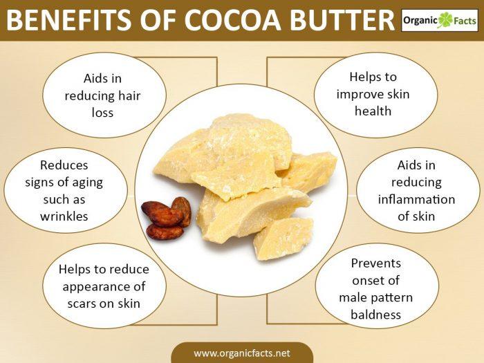 Cocoa Chocolate Benefits