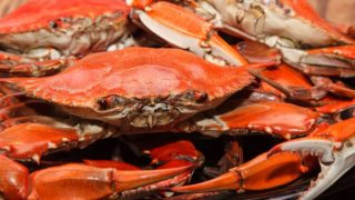 7 Incredible Crab Benefits