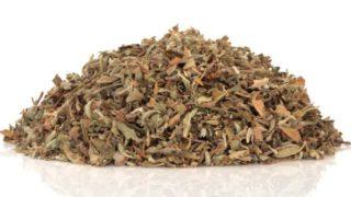 Damiana Tea: Benefits & How to Make