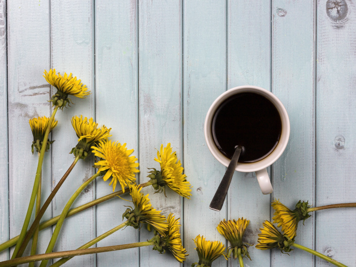 How To Make Dandelion Coffee