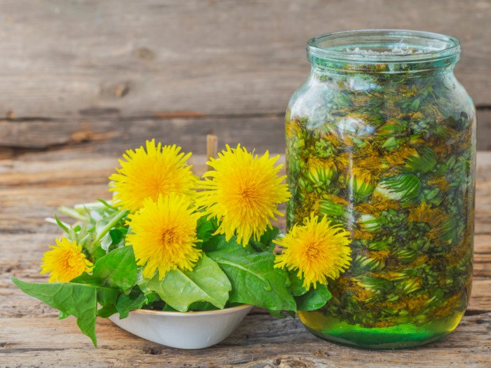 A jar filled with dandelion flowers and water and a bowl of fresh dandelion flowers with leaves