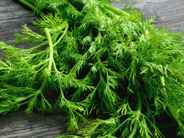 Dill: How to Make & Health Benefits
