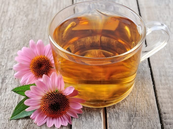 Echinacea tea in a glass cup next to echinacea flowers on a wooden counter