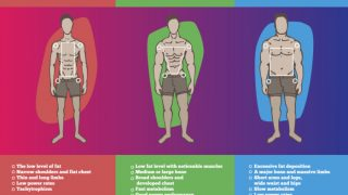 Endomorph Diet Plan to Lose Weight