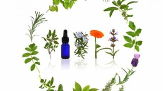 24 Best Essential Oils for Healthy Skin