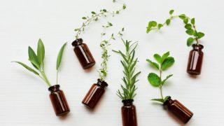 4 Best Essential Oils For Hormonal Balance