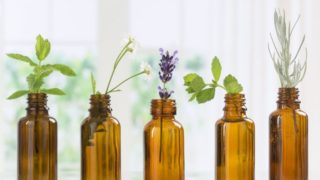 7 Essential Oils You Can't Leave Home Without