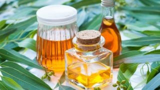 18 Wonderful Benefits of Eucalyptus Oil