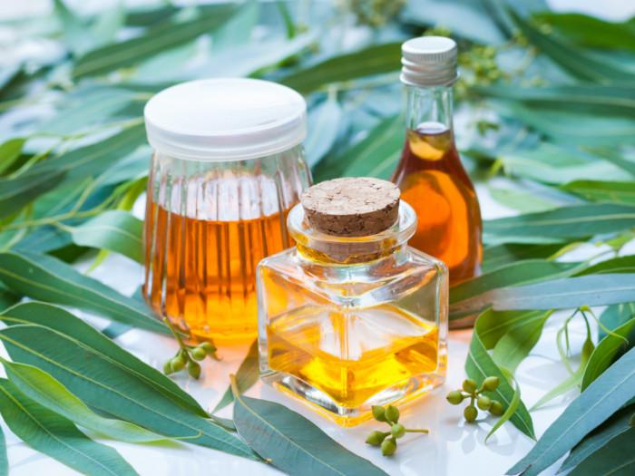 18 Top Health Benefits of Eucalyptus Oil | Organic Facts