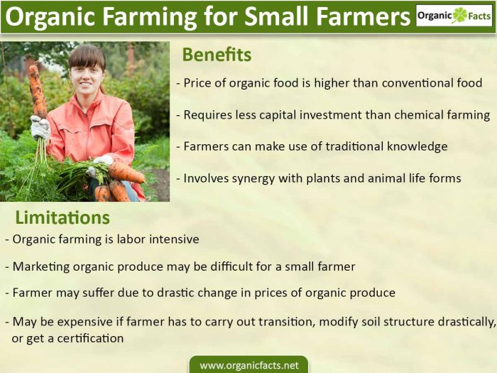 benefits of organic farming for small farmers organic facts however when it comes to organic farming farmers can make use of this traditional knowledge furthermore in cases of organic farming small farmers are