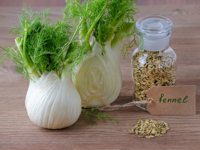 15 Impressive Benefits of Fennel | Organic Facts