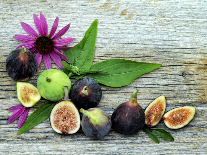 a124f638ca9 15 Nutritional Benefits of Figs or Anjeer | Organic Facts