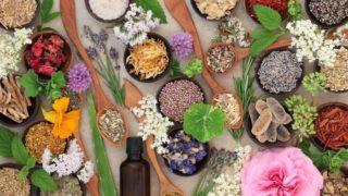 8 Amazing Herbs to Increase Energy
