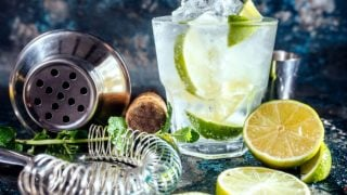 12 Surprising Benefits of Gin