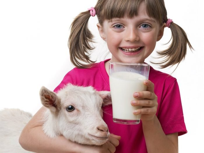 A young girl smiling while holding a glass of goat milk, with her arm around a goat