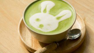 Green Tea Latte Recipe