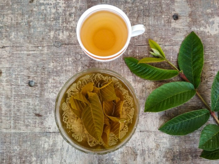 Guava Leaf Tea: Benefits & Side Effects | Organic Facts