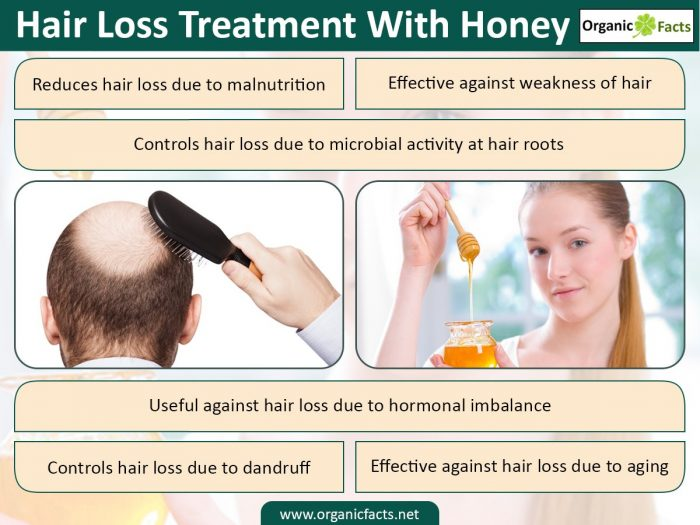 Hair Loss Treatment With Honey Organic Facts - Onion juice for hair regrowth review
