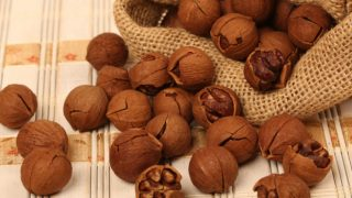 7 Surprising Benefits of Hickory Nut