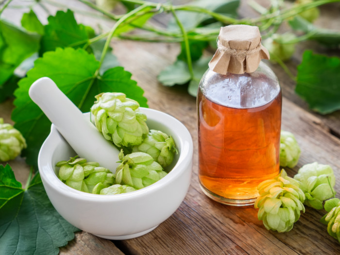 8 Best Benefits of Hops Essential Oil