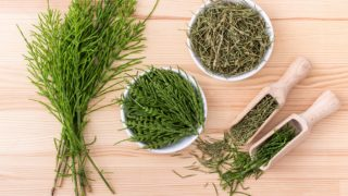 11 Impressive Benefits of Horsetail