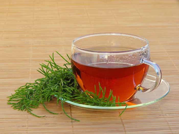 Closeup of a cup of tea with a horsetail twig on the saucer.