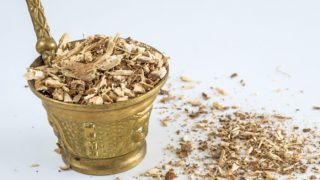 15 Best Benefits Of Hydrangea Root