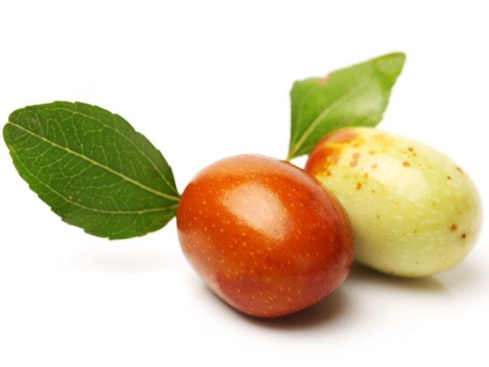 jujube fruit best fruits to eat