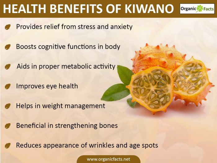 kiwanoinfo