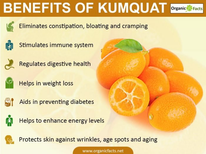 kumquat fruit healthy fruit for breakfast
