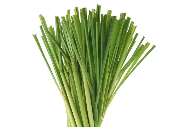 25 Surprising Benefits Of Lemongrass Organic Facts