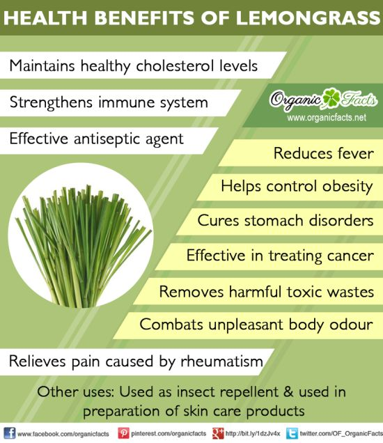 Health Benefits of Lemongrass | Organic Facts