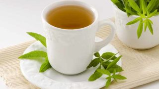 Lemon Verbena Tea: How to Make & Benefits
