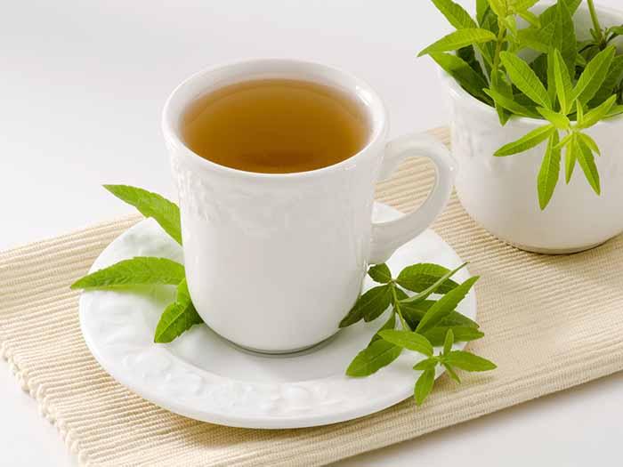 White cup of lemon verbena tea and lemon verbena leaves