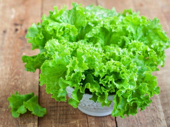 8 Impressive Benefits Of Lettuce Organic Facts