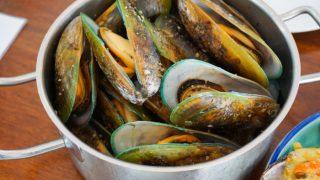 7 Wonderful Benefits of Lipped Mussel