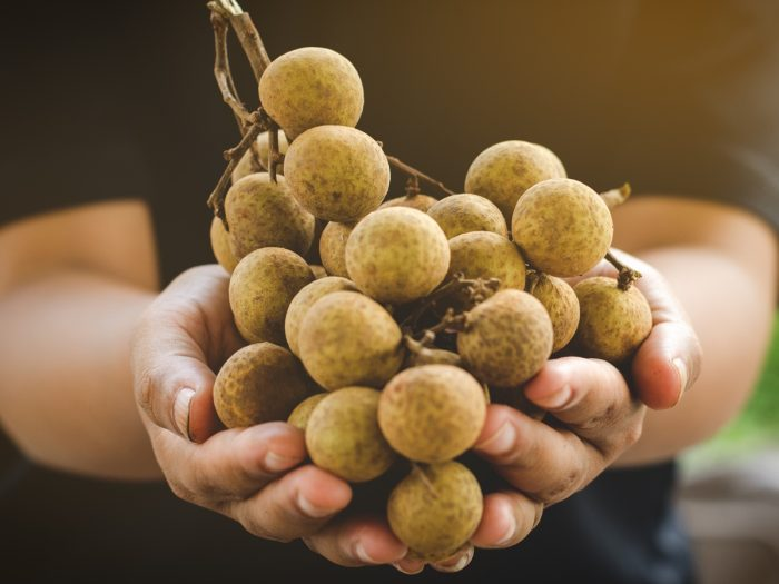 11 Wonderful Benefits of Longan Fruit & Its Nutrition Facts | Organic Facts