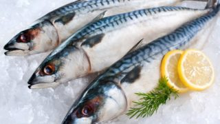 Eating Fish Linked to Higher IQ, Better Sleep