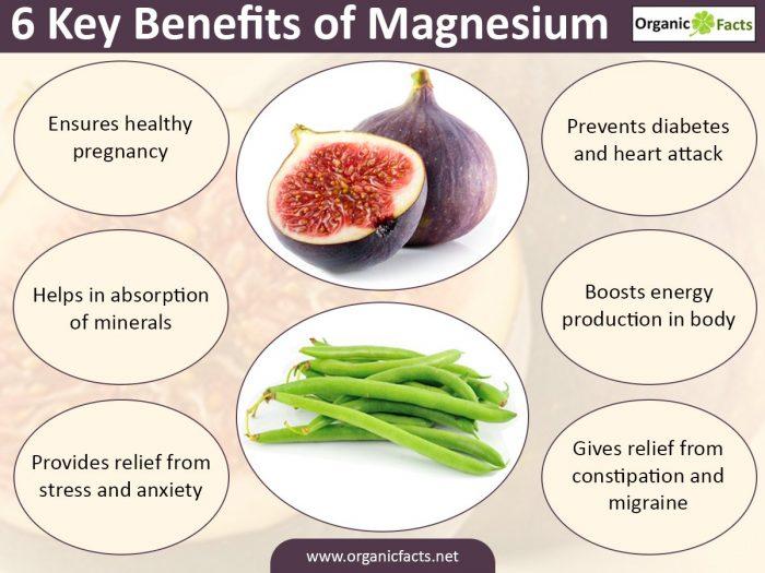 magnesiuminfographic