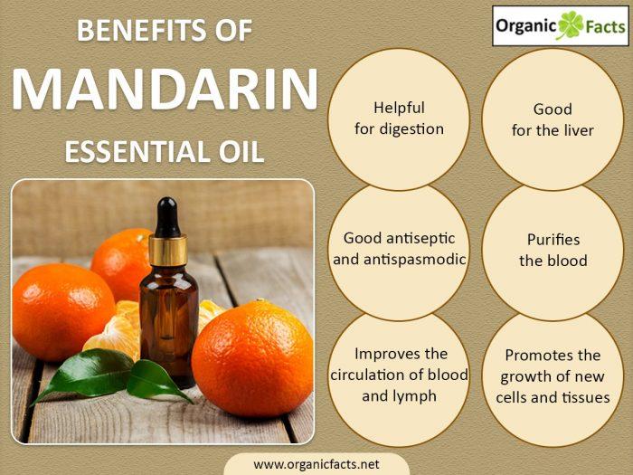 mandarininfographic