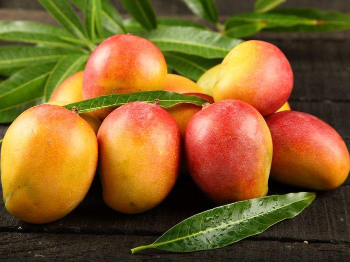 mangoes - MANGO'S 11 GEZONDE VOORDELEN EN VOEDINGSFEITEN