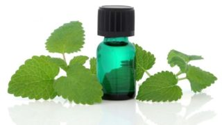 13 Amazing Benefits of Melissa Essential Oil