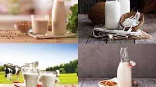 Coconut Milk vs Almond Milk vs Cow Milk vs Soy Milk