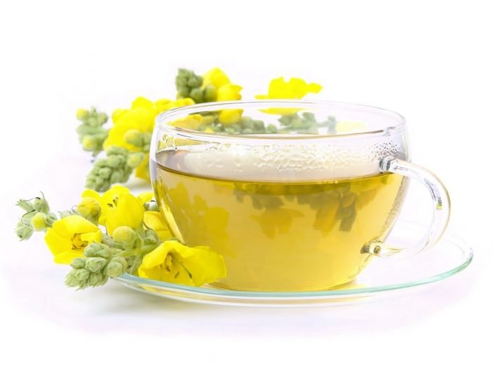 A cup of mullein tea against a white background, kept next to fresh mullein flowers